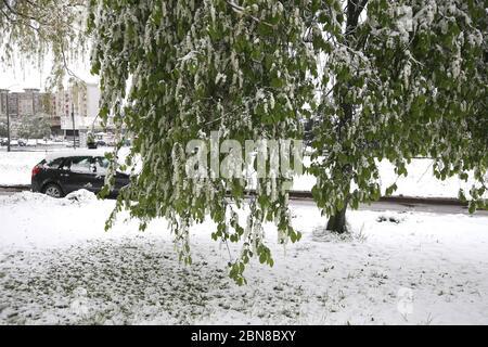 Wetter Litauen