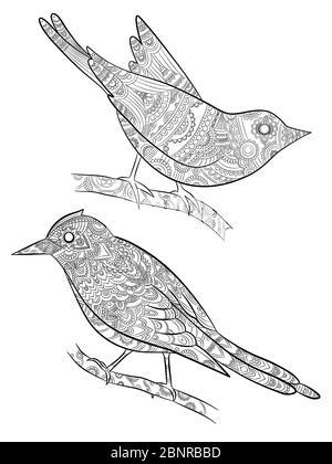 malvorlagen vogel. wild fliegendes tier in sitzen auf