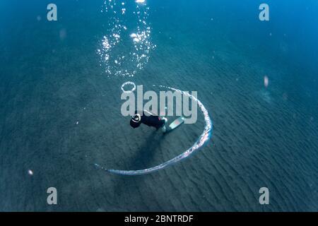 Freilebiger Unterwasserblasenringe im flachen Wasser von Teneriffa, Kanarische Inseln, Spanien.
