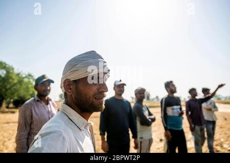 Eine Gruppe von Menschen beobachtet Mähdrescher schneiden Weizen während einer Ernte auf einem Feld in der Bulandshahr Bezirk von Uttar Pradesh, Indien, am Dienstag, 21. April 2020. Der Agrarsektor dürfte der einzige Lichtpunkt für Indiens blockierte Wirtschaft sein, da Premierminister Narendra Modi einen Plan ausarbeitet, um die größte Blockade der Welt zu beenden und die blockierte Wirtschaftstätigkeit wieder zu beleben. Fotograf: Kuldeep Singh Rohilla - Stockfoto