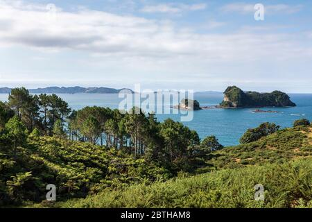 Stingray Bay mit Motueka Island und seinem kleineren Nachbarn Poikeke Island, in der Nähe von Hahei, Waikato, Nordinsel, Neuseeland - Stockfoto