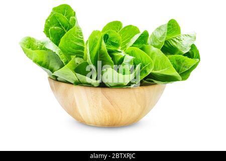 Roher Bio-Romaine Salat oder grüne cos in Holzschale auf weißem isolierten Hintergrund, Schnittpfad. Frische Salatsalat haben süßen Geschmack und knackig, delici