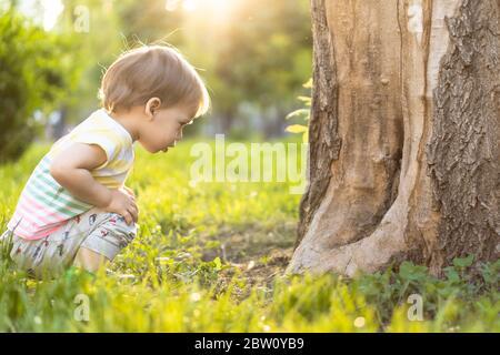 Kindheit, Natur, Sommer, Parks und im Freien Konzept - Porträt von niedlichen blonden kleinen Jungen in gestreiften mehrfarbigen T-Shirt in der Nähe Stamm eines alten - Stockfoto