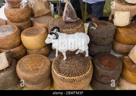 Verschiedene traditionelle italienische Käse auf einem Marktstand - Stockfoto