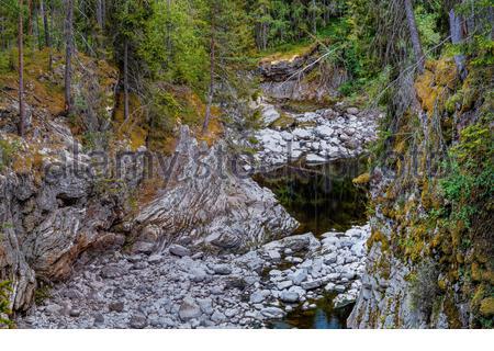 Canyon, ein trockenes Flussbett in einem Wald in Norwegen - Stockfoto