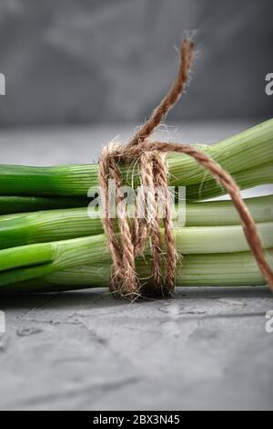 Frische grüne Zwiebeln mit einem Seil gebunden, Nahaufnahme, Lebensmittel-und Gesundheitskonzept mit Platz für Text, grauer Hintergrund.