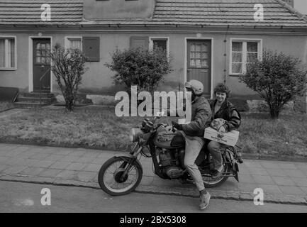 Sachsen-Anhalt / DDR-Land / 1990 DDR-Ehepaar auf Motorrad MZ in der Arbeitersiedlung Piesteritz bei Wittenberg. Es gehörte zu den ehemaligen Stickstoffwerken, die 1915 für die Munitionsherstellung gebaut wurden. Es ist ein schönes, geschlossenes Wohngebiet, mit Gärten hinter dem Haus und verkehrsberuhigten Innenhöfen. Es wurde 2000 renoviert. (Siehe neue Fotos) // DDR-Bürger / Paar / Personen / [automatisierte Übersetzung] - Stockfoto