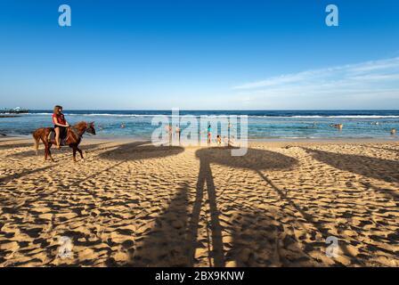 Strand am Roten Meer in der Nähe von Marsa Alam, Ägypten, Afrika. Ein junges Mädchen reitet auf einem braunen Pferd am Sandstrand, während andere Touristen im Meer schwimmen oder schnorcheln - Stockfoto
