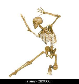 Skelett in einem weißen Hintergrund läuft dabei einen Kämpfer Pose zwei. Dieser Typ in Clipping Pfad ist sehr nützlich für Grafik-Design-Kreationen, 3d illustratio - Stockfoto
