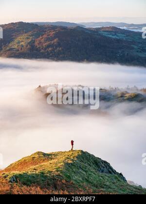 Ein Fotograf fängt die Wolkeninversion ein, die die Täler des Lake District um den Gipfel des Loughrigg an einem frostigen Herbstmorgen füllt.