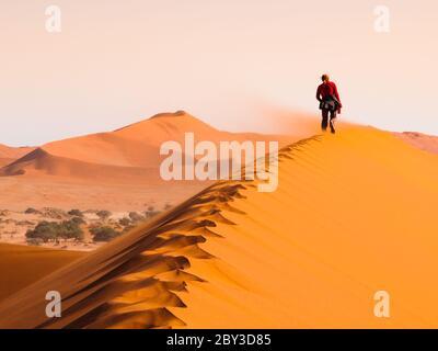 Frau, die bei windigem Wetter auf dem Grat der roten Düne, Sossusvlei, Namib Wüste, Namibia. - Stockfoto