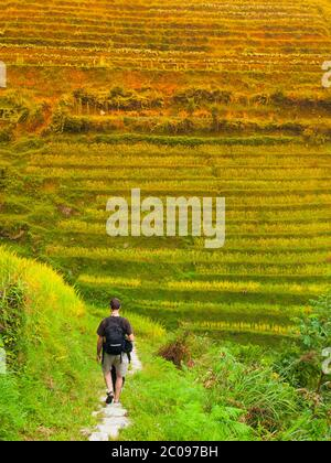 Tourist auf Dragon's Backbone Reisterrassen, Longsheng, Guangxi, China - Stockfoto