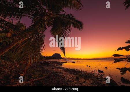 Fischerboot und Kokosnusspalme bei Sonnenuntergang. Le Morn Berg im Hintergrund in Mauritius.