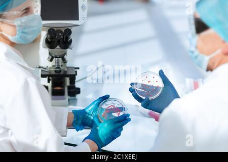 Mikrobiologie Wissenschaftler diskutieren die Ergebnisse ihrer Forschung . - Stockfoto