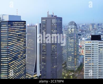 Panoramablick vom Tokyo Metropolitan Government Building in einer Vollmondnacht.