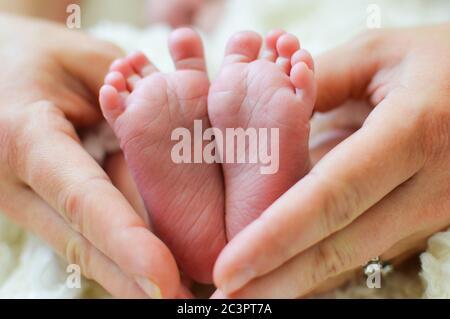 Füße des Neugeborenen in den Händen der Mutter - Stockfoto