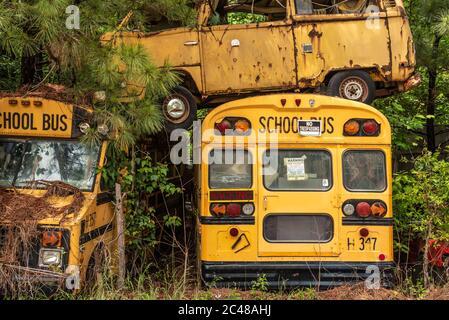 Gestapelte Busse auf dem Schulbus Friedhof in Alto, Georgia. (USA) Stockfoto