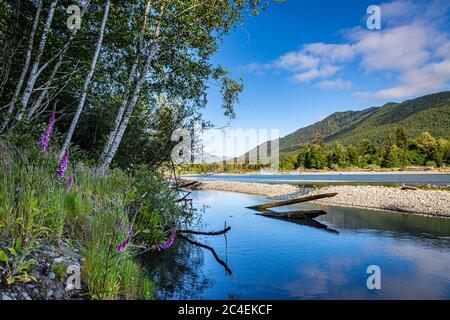 Blick über den Hoh River im Olympic National Park im Bundesstaat Washington
