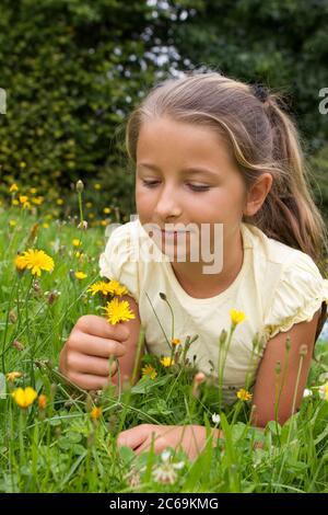 Mädchen liegt auf einer Löwenzahnwiese und blickt auf eine gelbe Blüte, Vorderansicht, Deutschland - Stockfoto