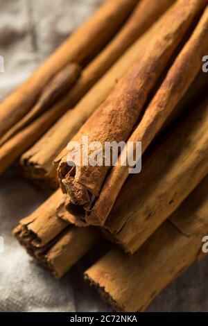 Trockene Bio Ceylon Zimt Sticks in einem Bündel
