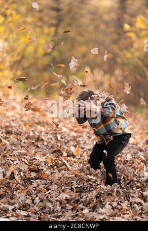Liebenswert kleiner Junge Flechten mit gelben Blättern in sonnigen Herbst Park Stockfoto