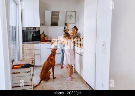 Mutter bereitet Käsekuchen, während Mädchen spielen mit Hund in der Küche Stockfoto