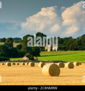 Landschaftlich reizvolle ländliche Landschaft (Strohballen im Farmfeld nach der Weizenernte, rustikale Scheune Ruine & Sonnenlicht auf dem Landhaus) - North Yorkshire, England Großbritannien. - Stockfoto