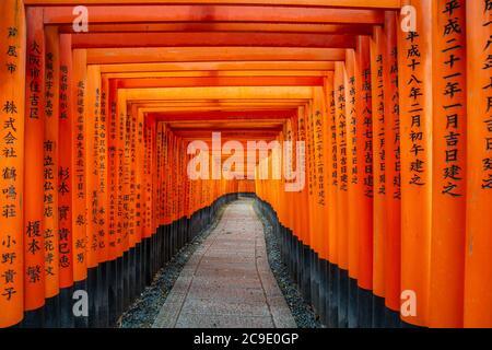 Kyoto, Japan - April 9,2017 : Tausende von roten Torii Tore entlang Gehweg in fushimi inari taisha Tempel ist wichtig schintoistischen Schrein und befindet sich in Kyot - Stockfoto