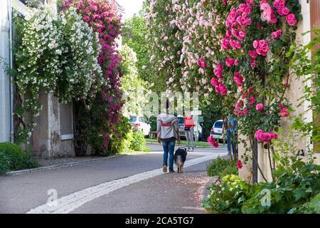 """Frankreich, Indre et Loire, Loire-Tal als Weltkulturerbe der UNESCO, Ch?digny, Gartendorf, das einzige Dorf in Frankreich, die &#x201c tragen; bemerkenswerte Garten """" Label - Stockfoto"""