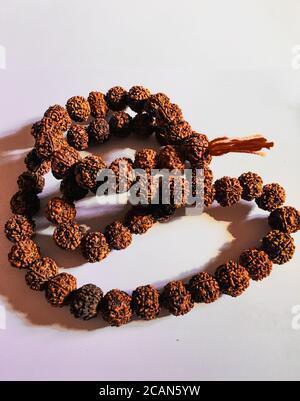 Rudraksha japa Mala oder Gebetsperlen aus den Samen des Rudraksha-Baumes auf weißem Hintergrund, 108 Perlen. Stockfoto