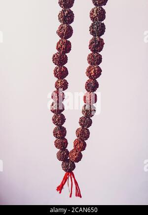 Rudraksha japa Mala oder Gebetsperlen aus den Samen des Rudraksha-Baumes auf weißem Hintergrund, 108 Perlen.