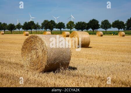 Linnich, Nordrhein-Westfalen, Deutschland - Strohballen liegen nach der Getreideernte auf dem Stoppelfeld, hinter dem Windpark liegen Windturbinen - Stockfoto