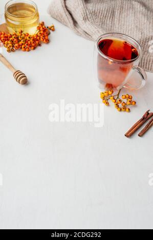 Vitamintee mit Beeren, Honig, Rowan- und Sanddornbeeren, Zimtstangen und trockenen Nelken auf hellem Hintergrund mit gestricktem beigen Pullover. v - Stockfoto