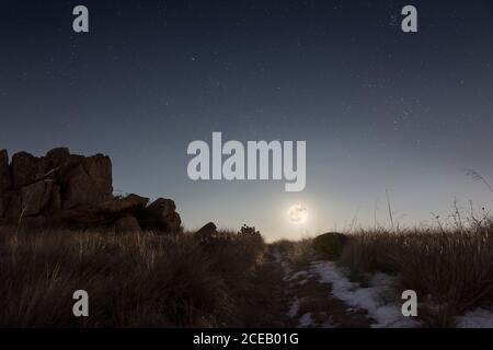 Vollmond, der in einer Winternacht über dem Hügel aufgeht