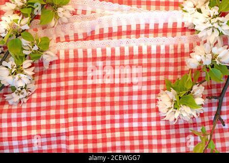 Küchenkonzept Hintergrund rot weiß Spitze kariert italienische Tischdecke Apfel Blossom Flat Lay Pizza Time Banner von oben - Stockfoto