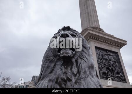 Einzelne Bronzeskulptur mit Löwenkopf am Fuß der Nelson-Säule am grauen Himmel des Trafalgar Square London.