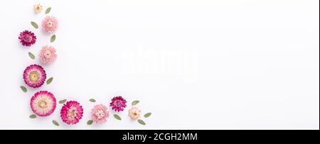 Banner. Blumenzusammensetzung. Eukalyptuszweige und trockene Blüten auf weißem Hintergrund. Flach liegend. Draufsicht. Kopierbereich - Bild - Stockfoto