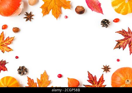 Herbstkomposition. Rahmen aus Herbstblättern, Kürbissen, Blumen, Beeren, Nüsse isoliert auf weißem Hintergrund. Herbst, halloween, Thanksgiving Tag Konz - Stockfoto