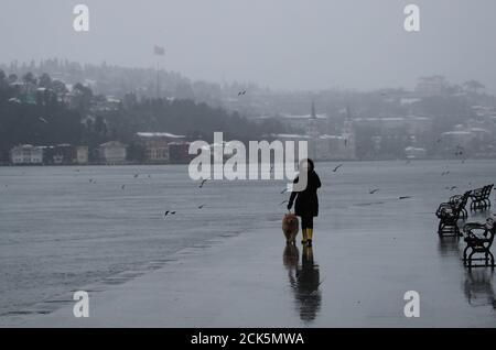 Eine Frau geht ihren Hund am Bosporus entlang während eines nebligen und verschneiten Sonntagvormittags in Istanbul, Türkei, 24. Februar 2019. REUTERS/Umit Bektas Stockfoto