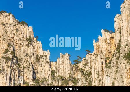 Felsformation in Calanque de l'Oule, Nationalpark Calanque, Marseille, Bouches du Rhone, Provence, Frankreich, Europa