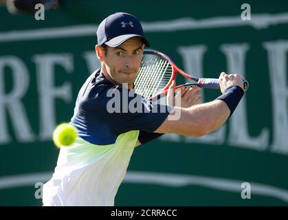 Andy Murray im Einsatz gegen Kyle Edmund Nature Valley International Herren Singles - zweite Runde. BILDNACHWEIS : © MARK PAIN / ALAMY