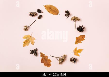 Kreative Komposition. Kranz aus getrockneten verschiedenen Blättern, Blumen, Tannenzapfen auf rosa Studiohintergrund für Werbung. Herbst, Herbst, Danksagung - Stockfoto