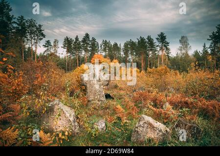 Region Babtsy, Witebsk, Belarus. Alte Steinkreuz im Alten Friedhof.