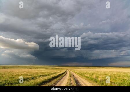 Unbefestigte Straße schlängelt sich durch Grasland mit einem stürmischen Himmel in der Nähe von Ekalaka, Montana, USA.