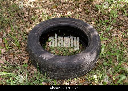 Alte gebrauchte Gummireifen Auto auf rohen Wald Ökosystem, Umwelt entsorgt Verschmutzung