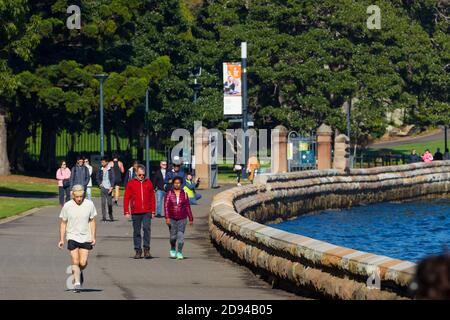 Der Spaziergang an der Meereswand am Mrs Macquarie's Point at Farm Cove und die Royal Botanic Gardens am Sydney Harbour in Sydney, Australien. - Stockfoto