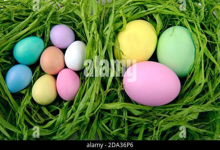 Ostern bunte Eier im grünen Nest Stockfoto