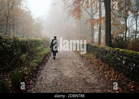 Eine Person geht alleine auf einem Pfad durch einen nebelbedeckten Wald in der Nähe des Stausees Swinsty in der Nähe von Otley, North Yorkshire. VEREINIGTES KÖNIGREICH Stockfoto