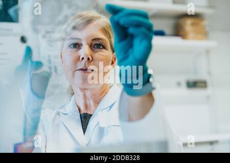 Weibliche Wissenschaftlerin hält menschlichen Gehirn Mikroskop Folie während des Stehens an Labor Stockfoto