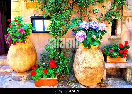 Blumenkrüge in La Turbie Frankreich Stockfoto